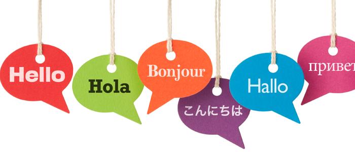 Full ITSM service for Translation company